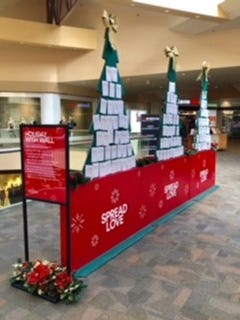 Rockaway Townsquare Mall is hosting a Holiday Wish Wall, a community initiative to help kids in need.