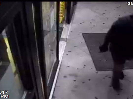 An unknown suspect shot the ceiling at a Lehigh Acres Dollar General on Saturday, Nov. 18, 2017.