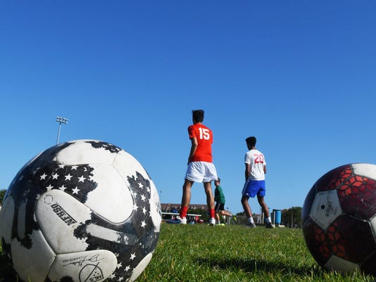 Soccer fields may get artificial turf
