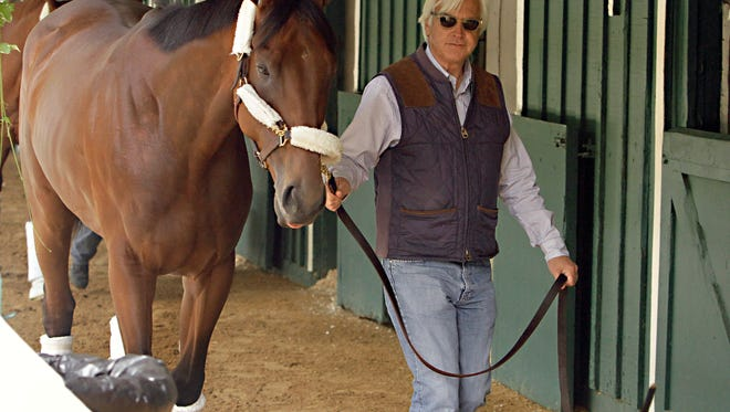 Hall of Fame trainer Bob Baffert walks American Pharoah around the stakes barn at Pimlico Race Course in Baltimore, Wednesday, May 13, 2015 after his arrival from Louisville.