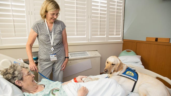 Karen Hersing, center, a licensed clinical social worker based at Health First's Holmes Regional Medical Center in Melbourne, works with Lana, a pet therapy dog, in reaching out to patients.