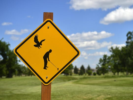 A sign reminds golfers that a pair of Swainson's hawks
