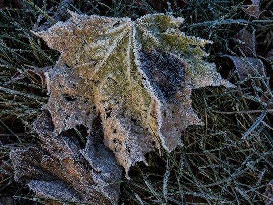 Below-freezing temperatures are expected in Greater Lansing starting Thursday night and possibly stretching into Saturday.