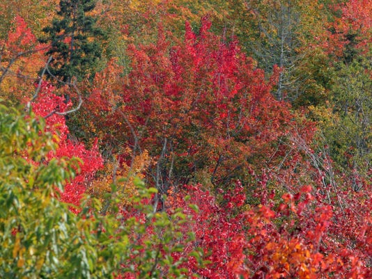 635758367457004136-fall-colors-Pictured-Rocks-18-
