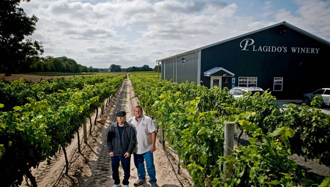Plagido's Winery owner Ollie Tomasello Sr., (left)  and his son Ollie Jr., right, walk t hrough the grape vineyards of Plagido's Winery in 2009.