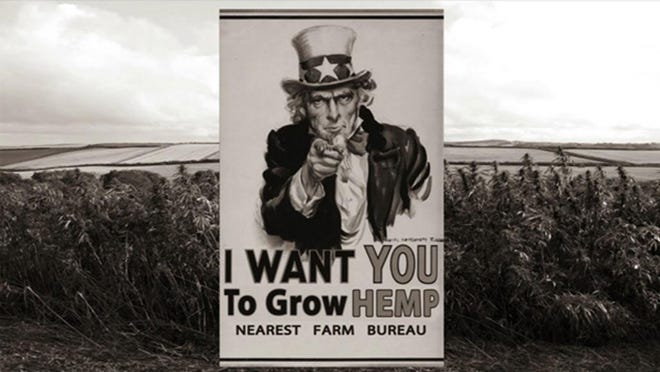 Hemp production held its own place in history in the U.S. including production during wartime.