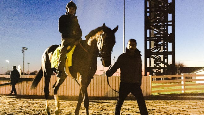 Mo Tom walks back to his barn Wednesday morning after working out at Churchill Downs.