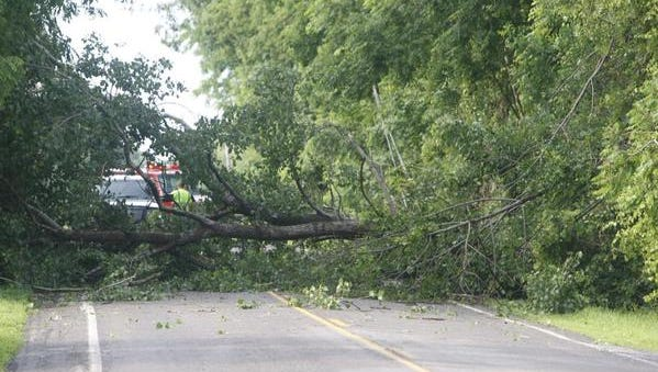 A tree down on Oak Opening Road in Livingston County also took down a pole and lines, near the Monroe County line.