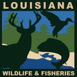 State exploring closure of Wildlife and Fisheries Office
