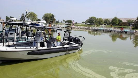 An Ohio official looks over an inlet filled with algae.
