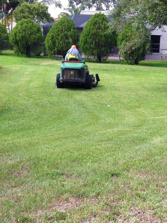 Mowing-Aug-13.jpg