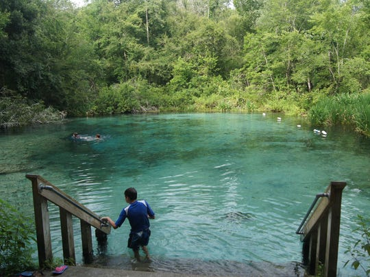 Northwest of Gainesville, near Fort White, the Ichetucknee Springs and River is one of several facing increased algae and murkier waters.