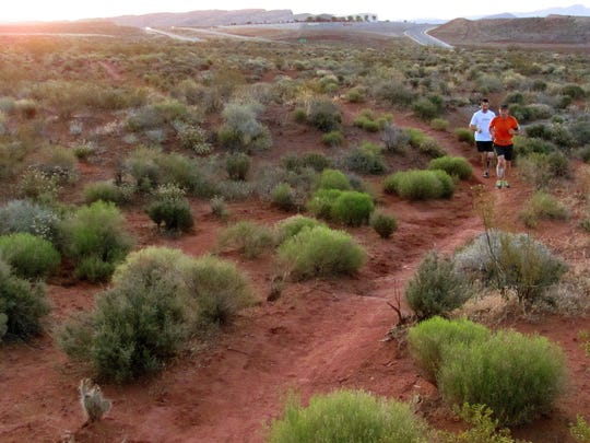 Runners participating in a group trail run navigate the Prospector Trail in the Red Cliffs Desert Reserve on Wednesday, May 27, 2015.
