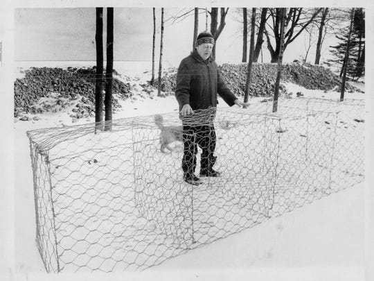 Parma resident Orm Gilmore displays a gabion that was to be filled with rocks and used as a breakwall in Lake Ontario. February 1973 photo