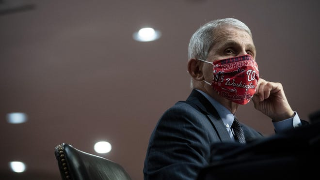 Director of the National Institute of Allergy and Infectious Diseases Dr. Anthony Fauci wears a face covering as he listens during a Senate Health, Education, Labor and Pensions Committee hearing on Capitol Hill in Washington, Tuesday, June 30, 2020.