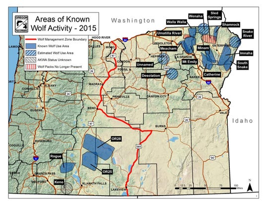 Areas of known wolf activity in Oregon.