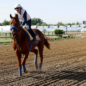 Preakness 2015 Expert Picks Bets For Handicapping