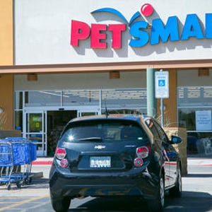 petsmart company study Company research paper petsmart petsmart, inc is the largest specialty retailer of services and solutions for the lifetime needs of.