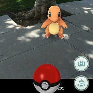Pokemon Go Report Multiple Accounts