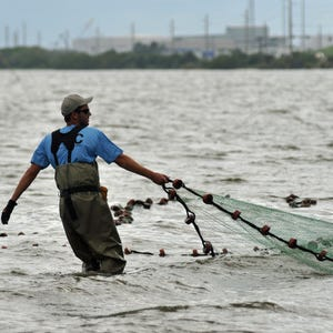 Space coast fishing forecast for april 22 24 for Fishing forecast today