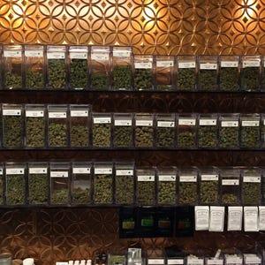 Oregon Marijuana Market Growing Thousands Of Jobs