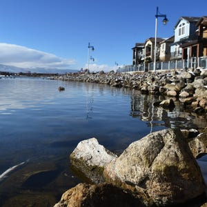 Trout to be stocked in sparks marina die offs probed for Sparks marina fishing