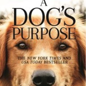 A Dog S Purpose Box Office Totals