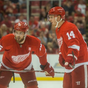 Detroit Red Wings Doing Great Job Standing Up For Each Other