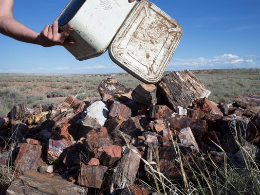 PNI petrified wood theft