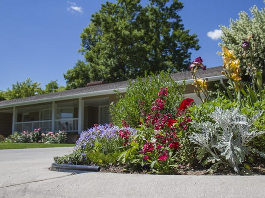 """The Routans' front walk is home to a profusion of colorful plants - the roses in front of the house, and a patch out by the sidewalk that Betty calls her """"Patriotic Corner"""" filled with irises, Dusty Millers and other plants in hues of red, white and blue."""