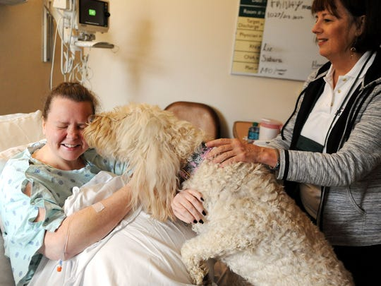 Glenna Bullis, left, a patient of Mission Health Systems, is greeted with a kiss from 9-year-old Misha, a Golden Doodle therapy dog. Misha's owner, Kay Loveland, a clinical psychologist stands at right.