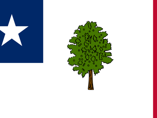 The Magnolia flag was Mississippi's first official state flag. It was adopted in 1861 and continued to be used through the Civil War.