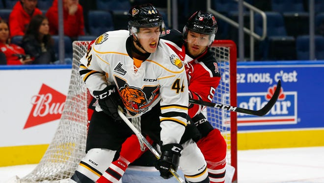Maxime Comtois (No. 44)  of the Victoriaville Tigres skates with the puck against the Quebec Remparts during their QMJHL hockey game.
