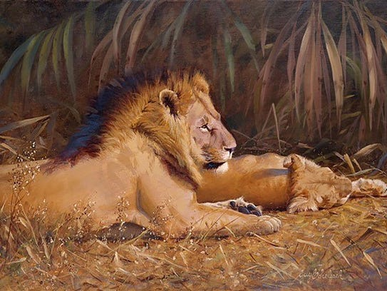 'Lions,' by local wildlife painter Guy Coheleach, will
