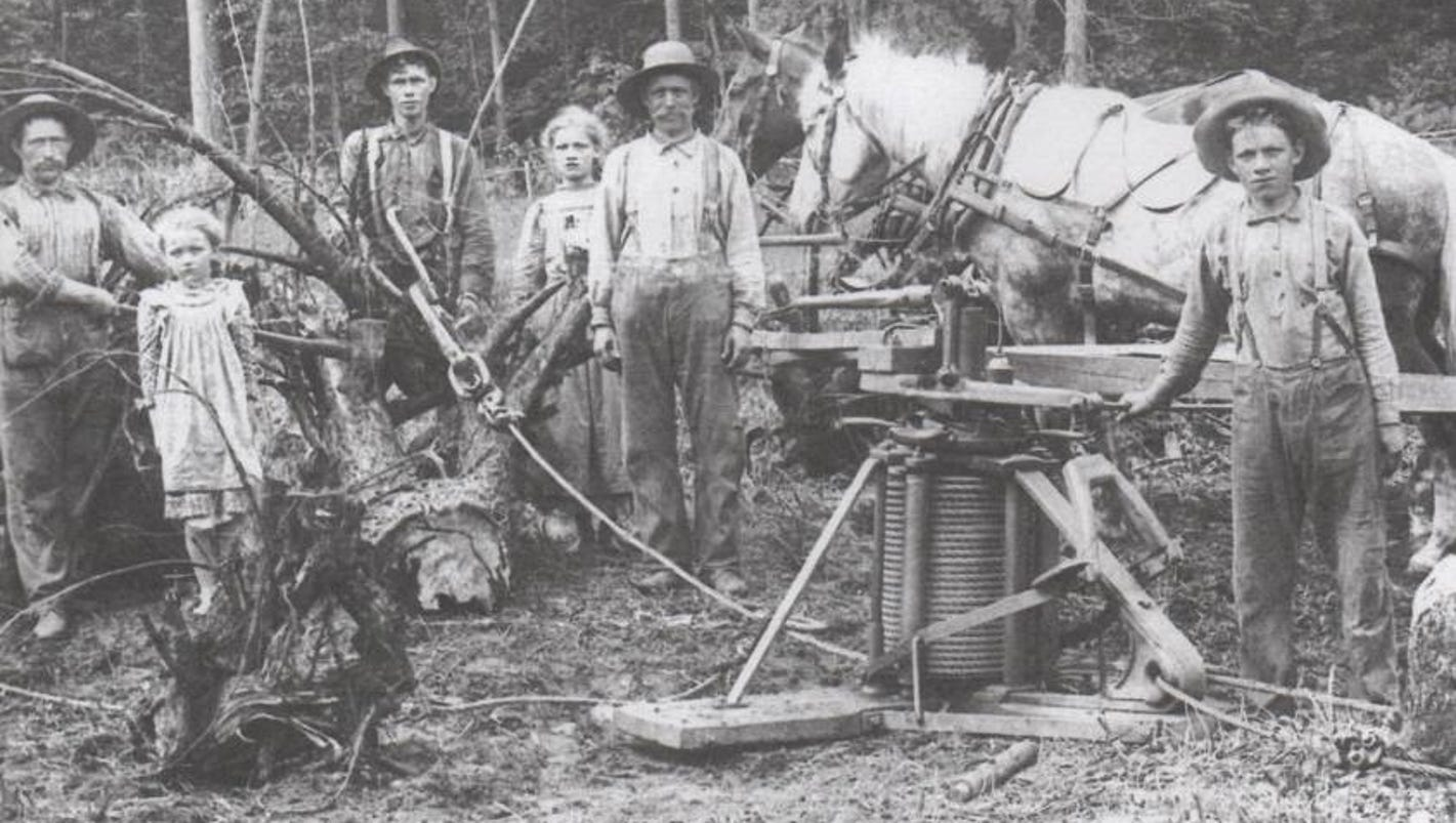 For Pioneers Farming Started With Stump Clearing
