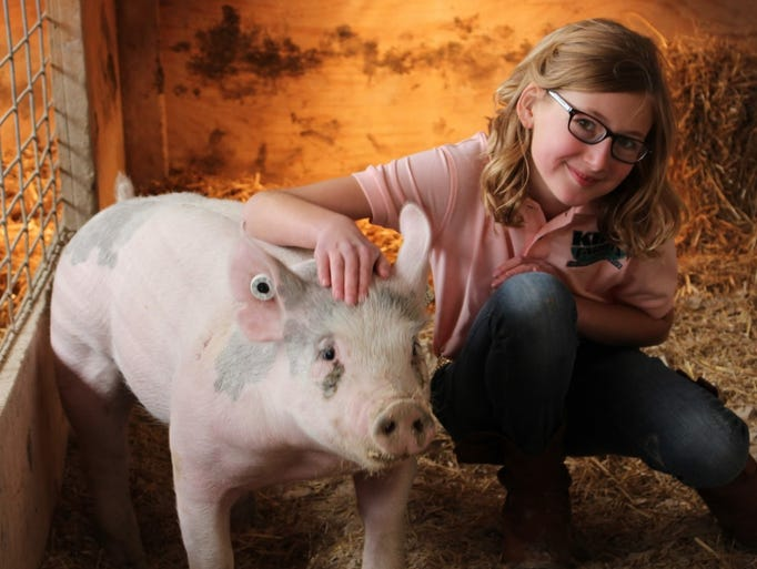 Katelyn King, 11, of Brownsville, cuddles with her pig Penelope when it was just one month old. The South Byron 4-H member won the grand championship with the (much larger) 307-pound Penelope during the market livestock show at the Fond du Lac County Fair on July 16.