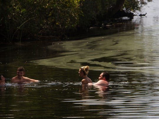 Riverdale High School students from left, Blane Reis, Jalen Pledger, Rachel cummings and Bradley Nottingham, all 16 enjoy the Caloosahatchee River in August of this year as algae floats near them in Olga. Nottingham has been swimming in the river for years and is concerned about the water quality, but not enough to deter him from keeping cool with his friends. Rachel cummings,  16,