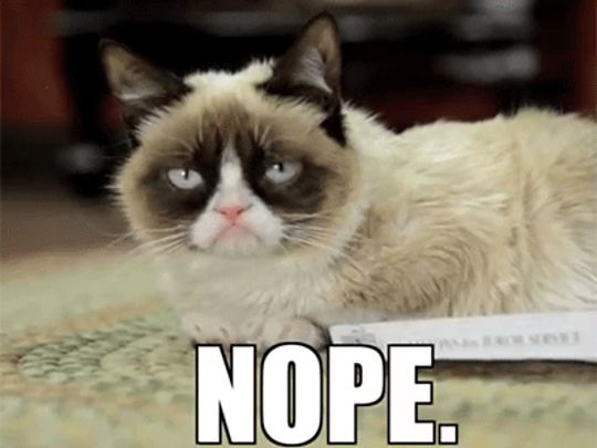 Listen to Grumpy Cat. (Giphy)