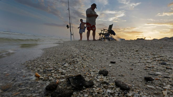 Sen. Bill Nelson says said memories of tar balls washing up on Florida's beaches from the 2010 Deepwater Horizon oil spill remain painfully fresh in Floridians' minds.