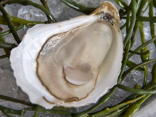 A Rose Cove oyster from Forty North Oyster Farms is