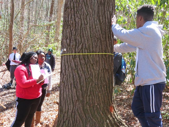 Students from the Asheville GreenWorks Youth Environmental Leadership Program get a forestry lesson at Holmes State Educational Forest April 1.