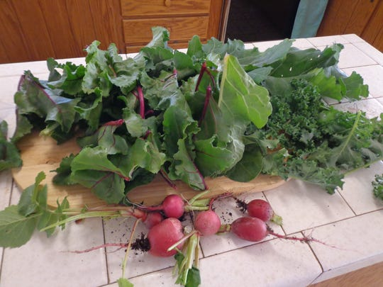 Winter crops grown for their leaves are a power house addition to your favorite winter recipes.