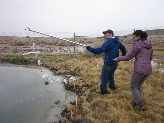 University of Nevada, Las Vegas researchers Brian Hedlund and Nancy Nou extract microbe samples from Great Boiling Springs in Gerlach, Nev.