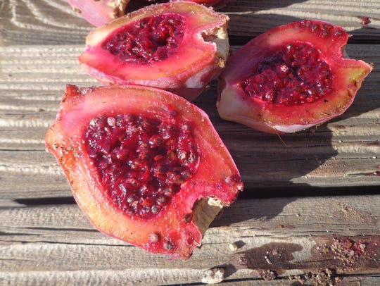 The interior of a prickly pear fruit with fleshy rind