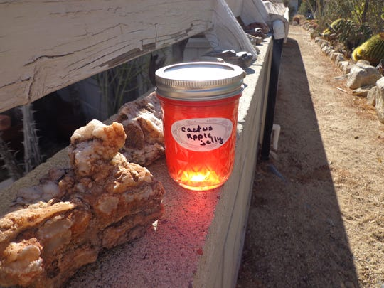 The transparent red color of prickly pear jelly makes a popular homemade holiday gift.