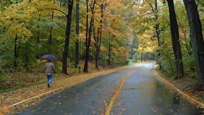 A pedestrian strolled through a rainy fall scene on a road in Iroquois Park. 10-29-02