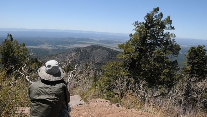 The view from the summit of Bill Williams Mountain, reached via the Benham Trail.