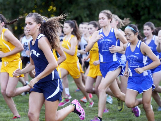 Girls from five schools take off during the cross country meet at Reservoir Park in Spring Garden Township on Tuesday. Runners from five schools participated in the meet, hosted by West York.