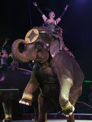 File photo from the El Riad Shrine Circus.