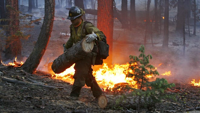 Wildfire activity is going to be above average again this year, Forest Service Director Tom Tidwell told members of the Senate Energy and Natural Resources Committee.